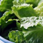 CDC Warns America to Toss All Greens After E. Coli Is Found in Romaine Lettuce