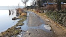 Ernst-Liesegang-Ufer: Gefährlicher Havel-Ufer-Weg in Kladow sorgt für Streit