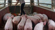 China levantará aranceles a algunos tipos de soja y carne de cerdo de EEUU