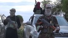 Nigeria's Boko Haram crisis: Aid workers 'killed' in Borno state