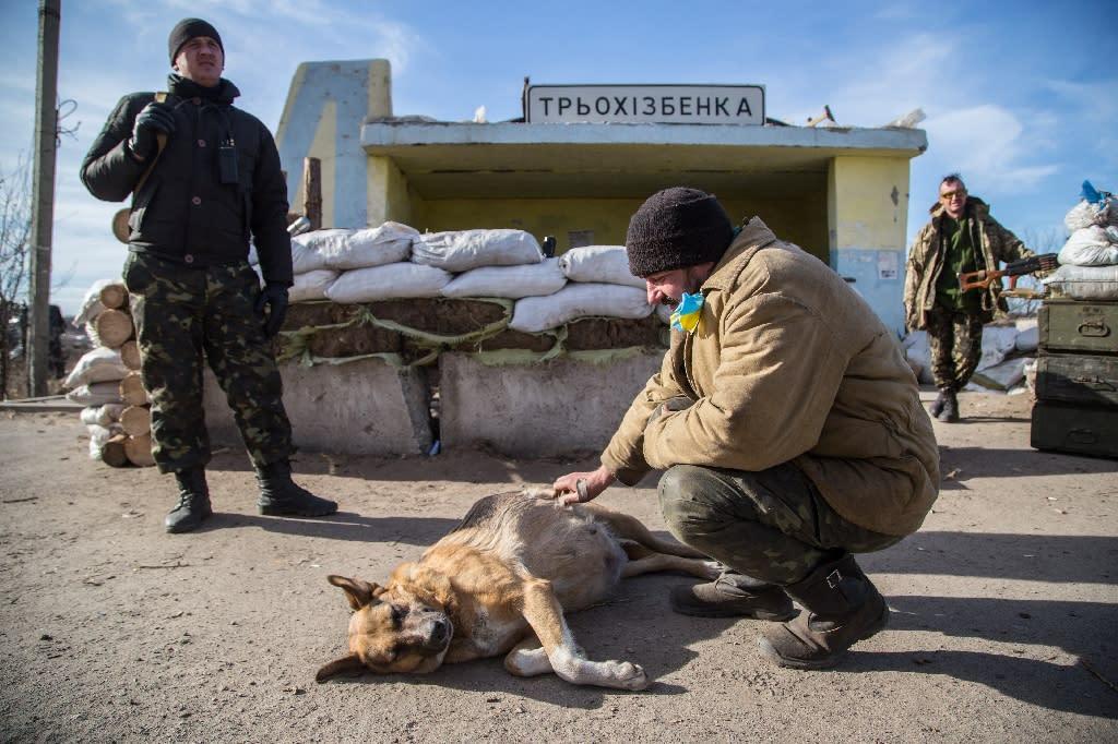 A Ukrainian serviceman pets a dog at a checkpoint near Slavyanoserbsk, in the region of Lugansk on February 25, 2015 (AFP Photo/Oleksandr Ratushniak)