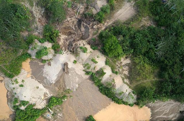 Drones hunt illegal logging in Amazon rain forests