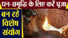 Nag Panchami: Worship to attain wealth, prosperity, special combinations are being made