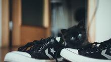 腳板同鞋底細菌一樣多?!