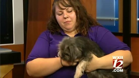 Noon Pet Of The Week: Frank