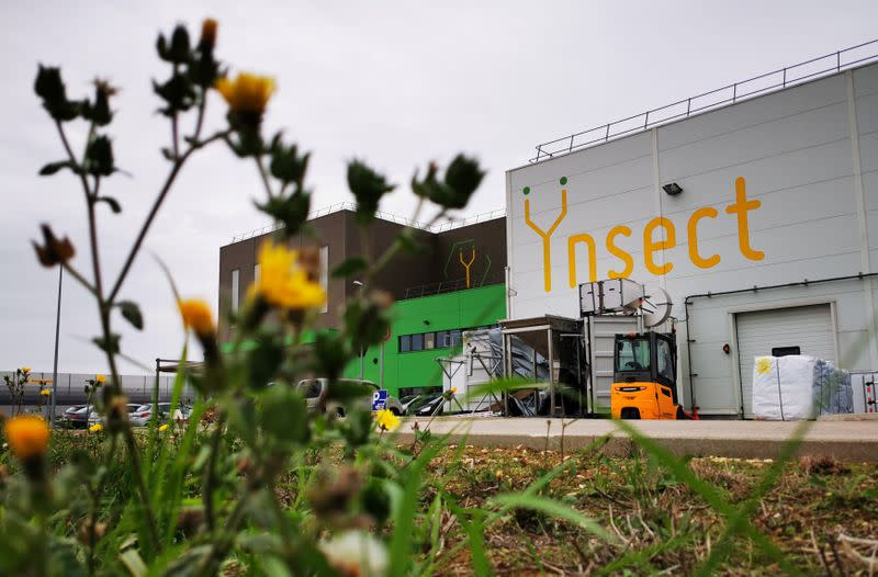 French <b>startup</b> Ynsect to build world's biggest bug farm