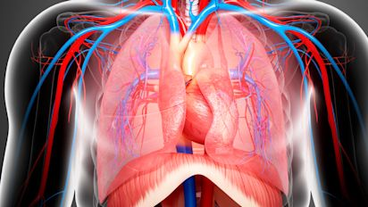 QUIZ: Where in your chest is your heart located?