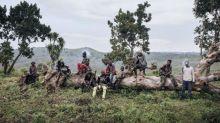 Un Prix de l'Unesco à une ONG congolaise qui sauve des enfants soldats dans l'est de la RDC
