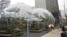 Amazon西雅圖總站啟用 內置熱帶雨林?!