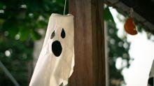 Esta ardilla con una máscara terrorífica te hará latir fuerte el corazón, ¡pero no de miedo!