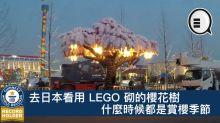 去日本看用 LEGO 砌的櫻花樹!什麼時候都是賞櫻季節