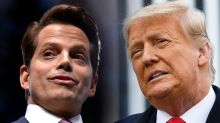 Anthony Scaramucci compares Trump to Timothy McVeigh: 'The domestic terrorist of the 21st century'