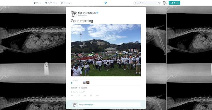 Twitter removes background wallpaper from user homepages