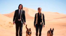 John Wick vuelve y el mundo se preocupa por sus nuevos perros