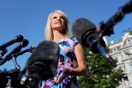 White House adviser Kellyanne Conway speaks at the White House in Washington