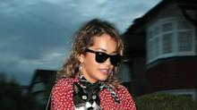 Rita Ora Carries Her Cat as an Accessory Just Like These 3 Other Celebrities