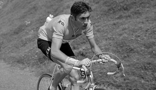 Radsport: Ehemaliger Tour-Sieger Pingeon gestorben