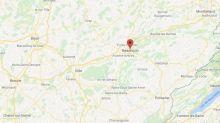 Besançon : une soixantaine de chats morts retrouvés dans un congélateur