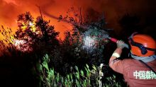 Dryness, sudden winds factors in deadly China forest fire