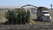 Corn, wheat futures climb to multimonth highs as U.S. planting has slowed