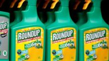 Washington state sues Monsanto over PCB damages, cleanup costs