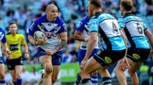Dogs stay patient on Klemmer replacement