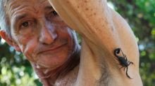 En Cuba, el veneno de escorpión es un remedio para aliviar el dolor