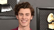 Everything we know about Shawn Mendes' Netflix documentary In Wonder
