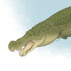 "Ancient ""terror crocodiles"" had banana-sized teeth to eat dinosaurs"