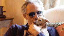 Andrea Bocelli perdió a su perra en el mar y fue denunciado por negligencia