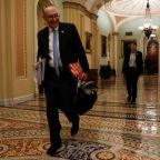 Top Senate Democrat: Trump should stay out of government funding