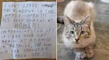 Cat returns home with note taped to collar from angry neighbour threatening to kidnap it