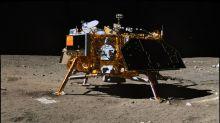 China plantará flores y patatas en la cara oculta de la Luna