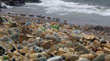 Ambiente,Greenpeace:Nestlé ammette riciclo non basta salvare mari