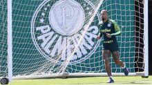 Palmeiras treina e Felipe Melo cumpre etapa de transição física