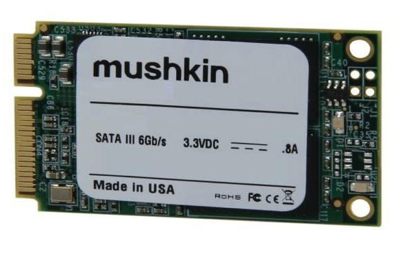Mushkin shipping 'world's first' 480GB mSATA SSD in January for $500