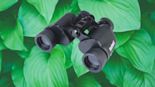 'Clear as a bell': Bushnell Falcon binoculars are Amazon's deal of the day — on sale for only $19