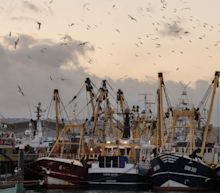 UK strikes fishing deal with Norway and offers fisheries 'transition period' to EU