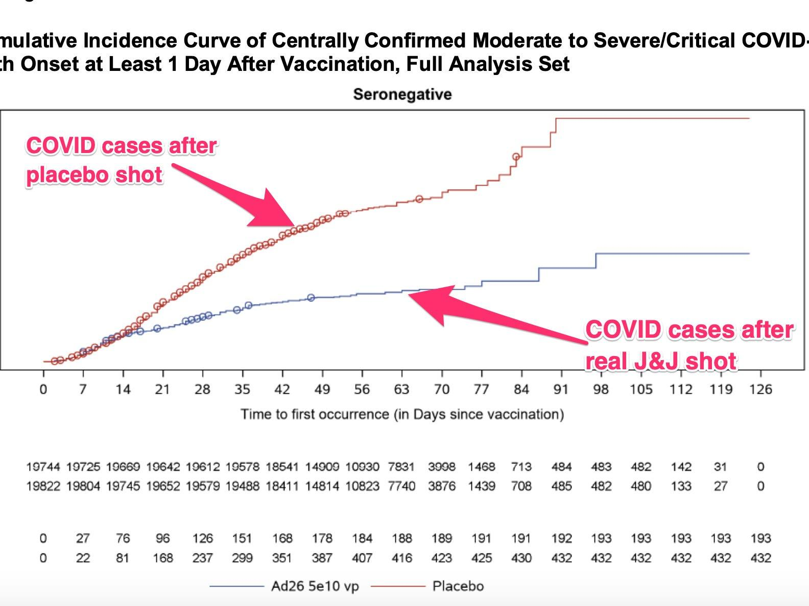 One simple chart shows how well J&J's single-dose coronavirus vaccine works, with protection starting after 2 weeks