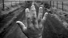 O custo humano dos agrotóxicos