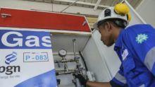 Setahun Jokowi-Ma'aruf, Pemerintah ambil risiko turunkan gas industri