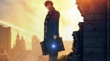Fantastic Beasts 2: J.K. Rowling says Newt Scamander's Patronus is a 'big spoiler'