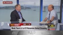 Media companies not destroying, but partnering with Roku, says CEO
