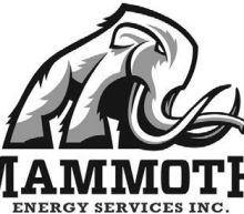Mammoth Energy Services, Inc. AnnouncesFourth Quarter and Full Year 2020 Operational and Financial Results