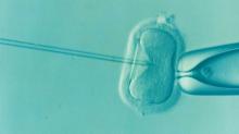 Qualidade do sêmen masculino está caindo e prejudicando a fertilidade. Saiba porque
