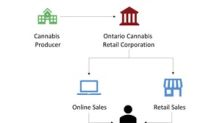 What Government-Regulated Cannabis Retail Could Mean for Producers