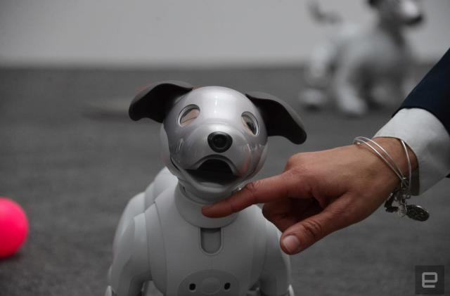 Sony Aibo first impressions: old robot dog, new tricks