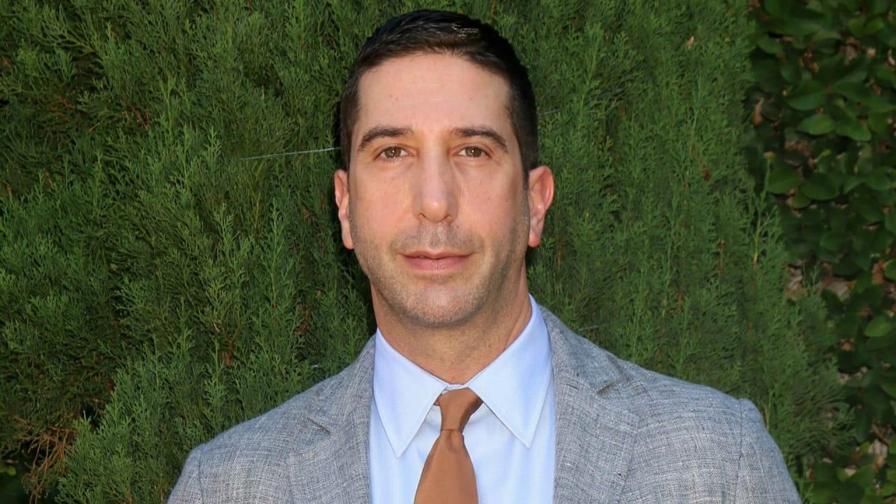 David Schwimmer Is One of the Good Guys in Hollywood