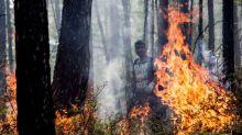 Sibérie: une vague de chaleur provoque de nombreux feux de forêt dont la fumée étouffe les villes