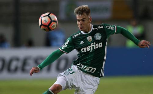 Empate contra o Jorge Wilstermann garante classificação do Palmeiras na Libertadores e retorno de 325% ao investidor